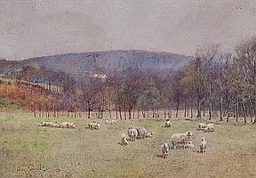 PERCY BROOKE (ENGLISH) A FLOCK IN THE VALLEY