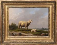 """Franz von Severdonck (1809-1889). """"Schafe auf der Weide"""". Öl/Holz, li./u./s"""