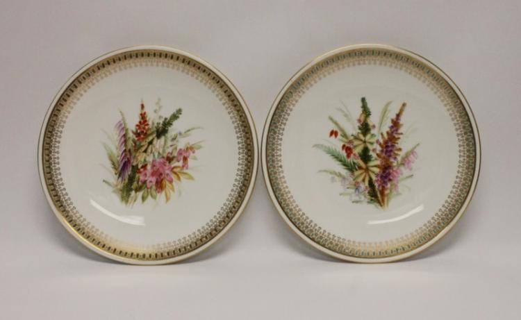 (2)1875 Royal Worcester Hand Painted Plates