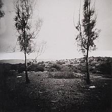 Ilit Azoulay, b. 1972