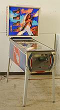 1978 Stern Nugent Pinball Machine.