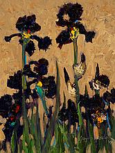 Grayson Foulger - Purple Irises