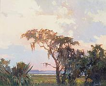 Marlin Linville - Lowcountry Sunset and Landscape