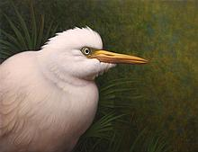 Russell Gordon - Egret