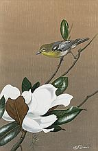 Edward von S. Dingle - Yellow-Throated Vireo and Magnolia