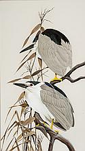 Art LaMay - Black Crowned Night Heron