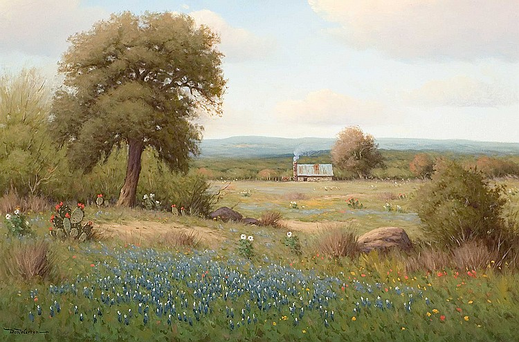 Don Warren - Texas Bluebonnets