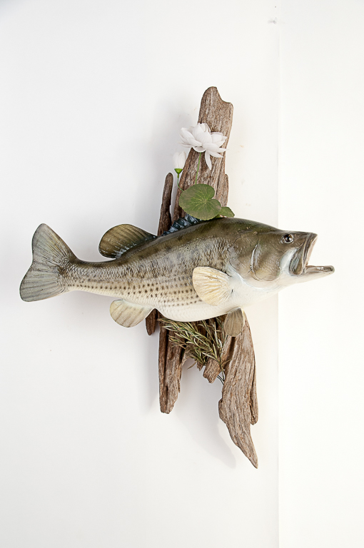 White Crappie Fish Wall Mount