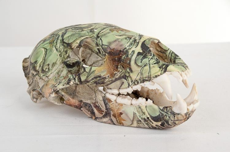 Bear Skull Dipped with Camo