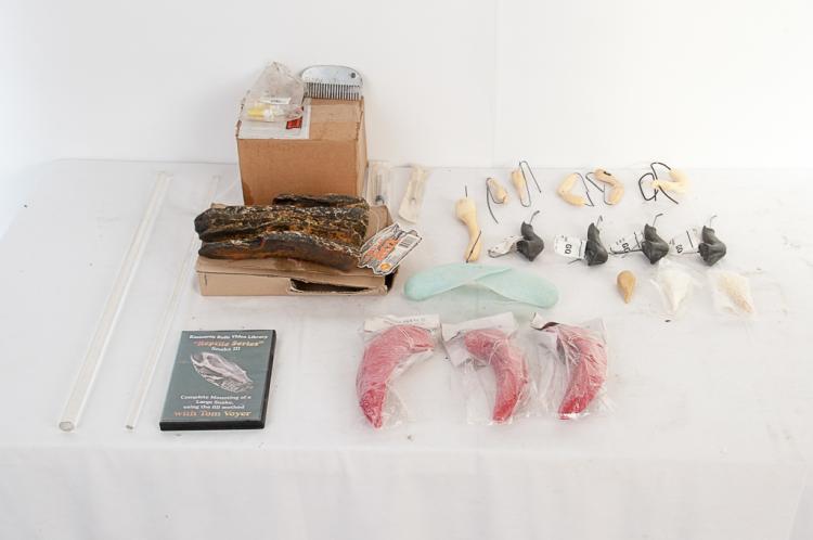 Misc. Box Large Fish Set of Gills