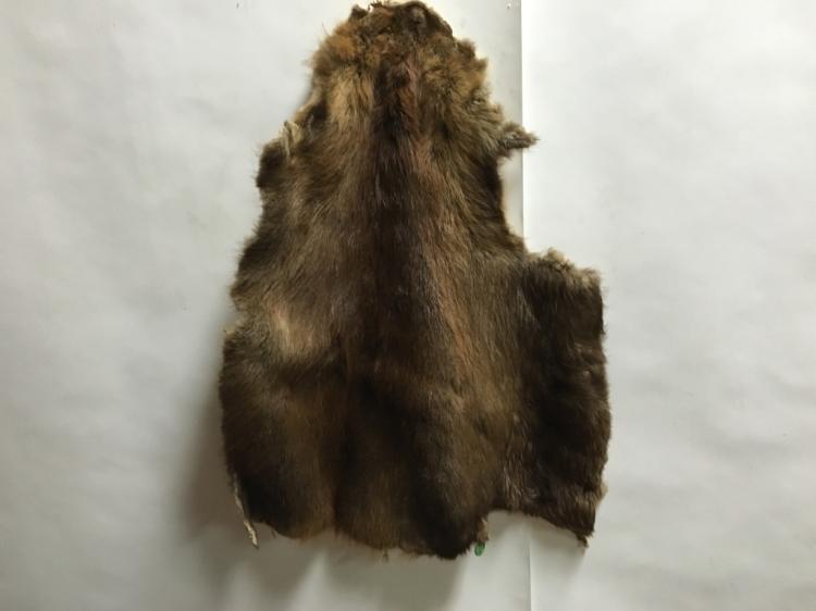 Beaver Tanned Hide