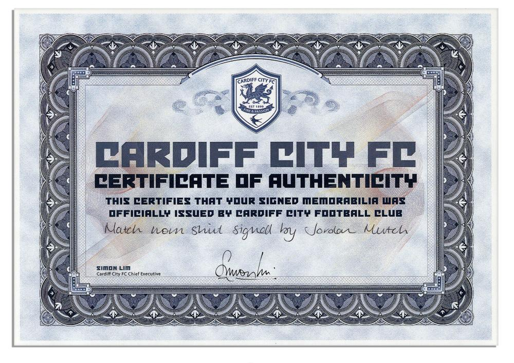 Jordon Mutch Match Worn Cardiff City Shirt COA 045f7e888