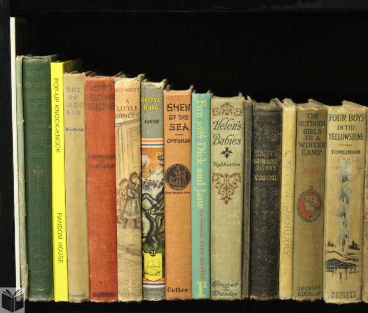 Illustrated Picture Books CHILDREN'S BOOKS Juvenile Series