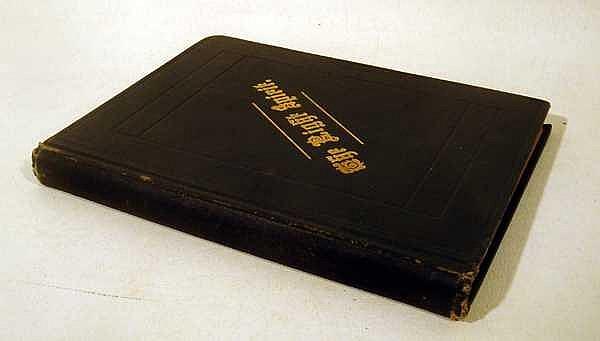 Lizzie D Cottier THE RIGHT SPIRIT 1885 First Edition Antique Literature Mental Illness Insane Asylum Confinement