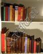 Vintage & Antique COLLECTIBLE ESTATE BOOKS Literature Children's History