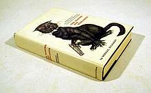 Mikhail Bulgakov THE MASTER AND MARGARITA 1967 First US Edition Fantastic Novel 20th-Century Classic Russian Literature Dust Jacket