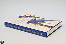 Susanne M Low A GUIDE TO AUDUBON'S BIRDS OF AMERICA 2002 Contemporary Art History & Ornithology Illustrations Color Plates Illustrated Dust Jacket