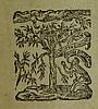 Pindar PINDARI OLYMPIA PYTHIA NEMEA ISTHMIA 1612 Antique Poetry Latin Illustrated Initials Vellum Binding