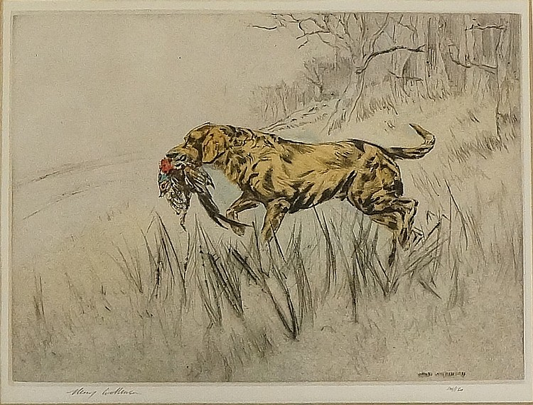 Henry Wilkinson - retriever with pheasant in its mouth, coloured etching, s