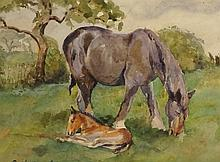 Cecilia Crompton - Mare and Foal, watercolour, signed lower left, the rever