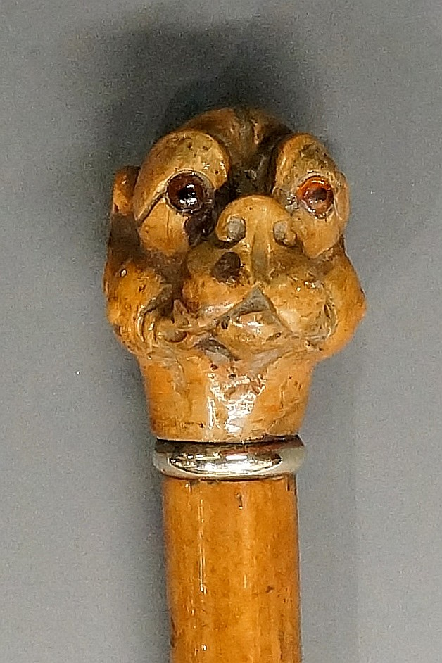 A 19th Century walking stick, the terminal carved with a dog's head, amber