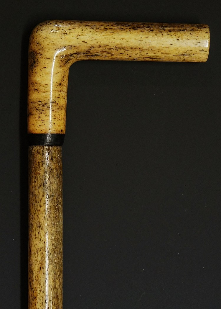 A 19th Century smoothed Narwhal tusk walking stick, simple L-shaped handle