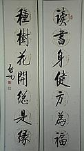Pair of Chinese Calligraphy Hanging scroll
