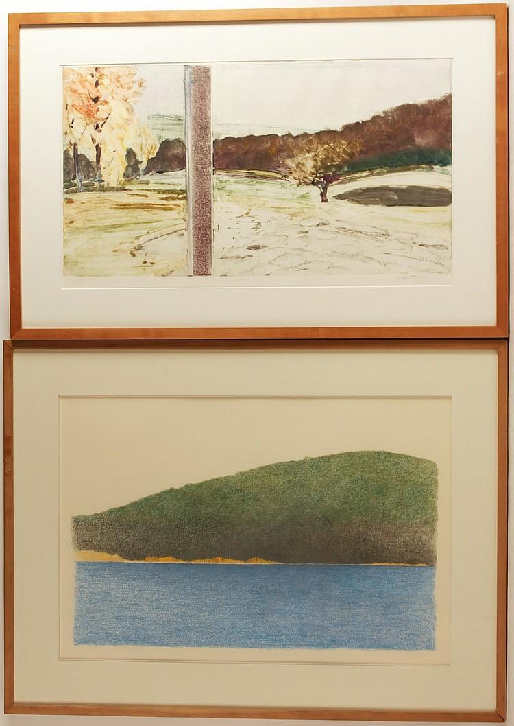 Monoprint, Landscape, Joel Janowitz
