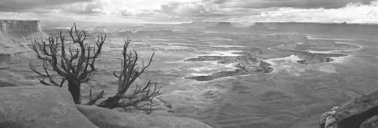 Canyonlands National Park - Large-Scale, Limited Edition Photography