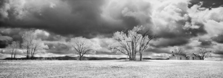 House and Trees Red Mesa - Large-Scale, Limited Edition Photography