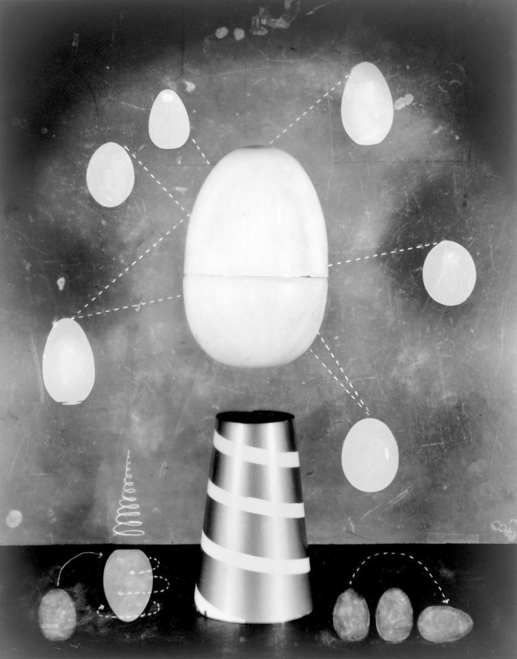 Trompe l' Oeuf - Original Fine Art Photography