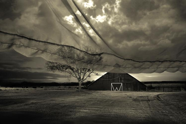 Beyond Memory - limited edition photograph