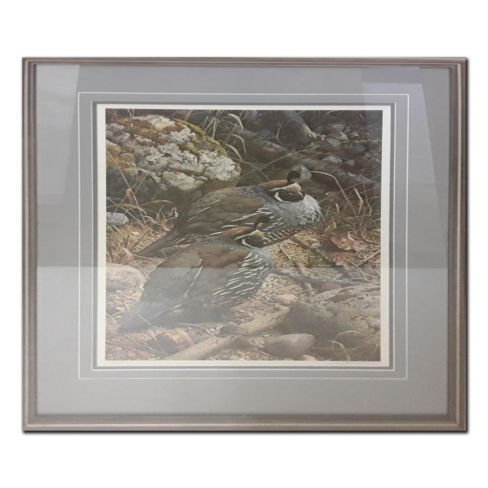 "Carl Brenders' ""California Quail"" Limited Edition Framed Print"