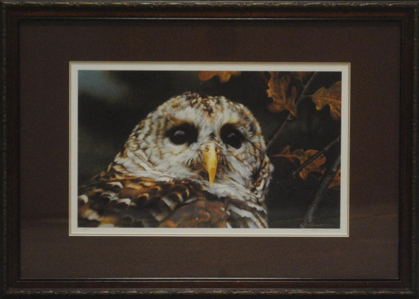 """Carl Brenders' """"Up Close- Barred Owl"""" Limited Edition Print"""