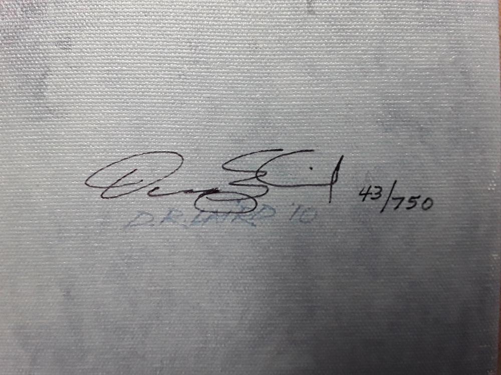 "Doug Laird's ""River Rewards"" Limited Edition Framed Canvas"