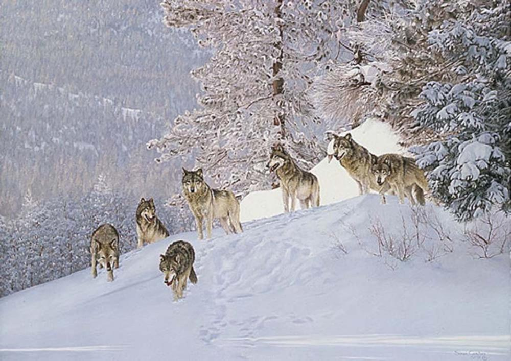 """Simon Combes' """"Snowpack"""" Limited Edition Print"""