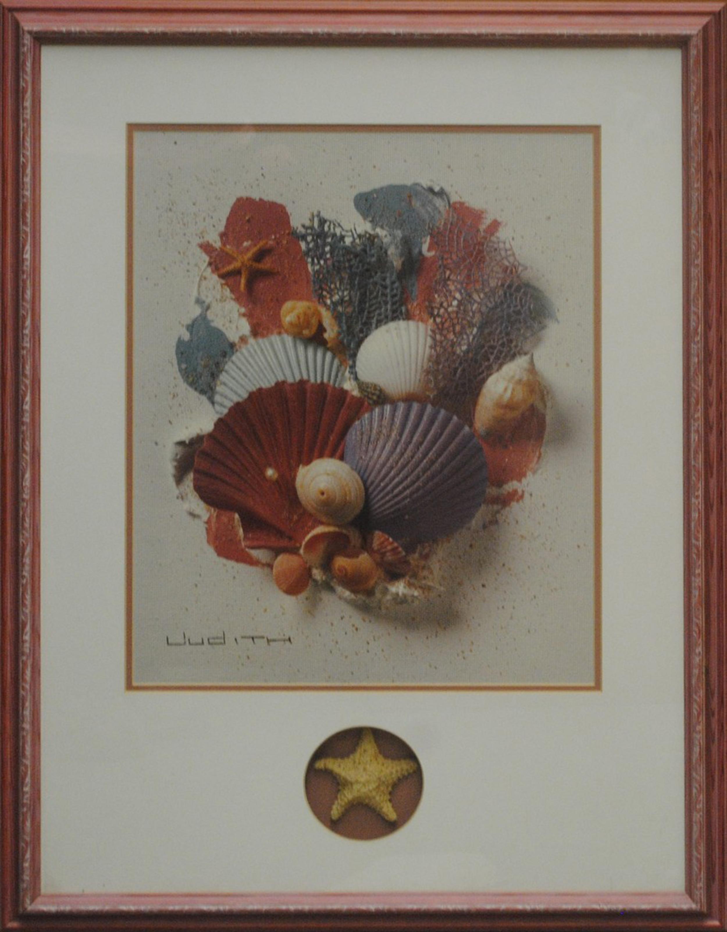 Open Seashell Print With Seashell