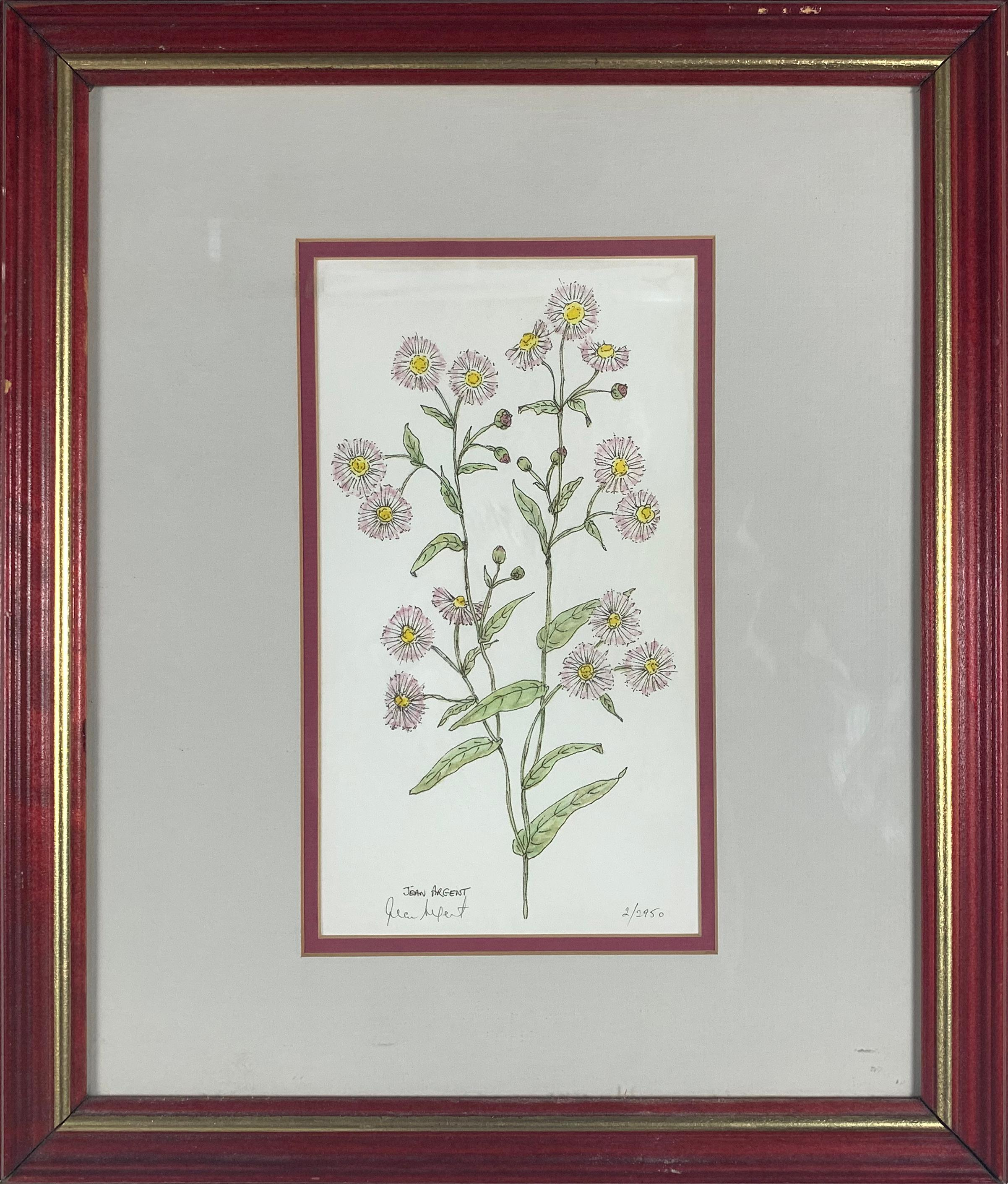 Jean Argent Limited Edition Floral Print