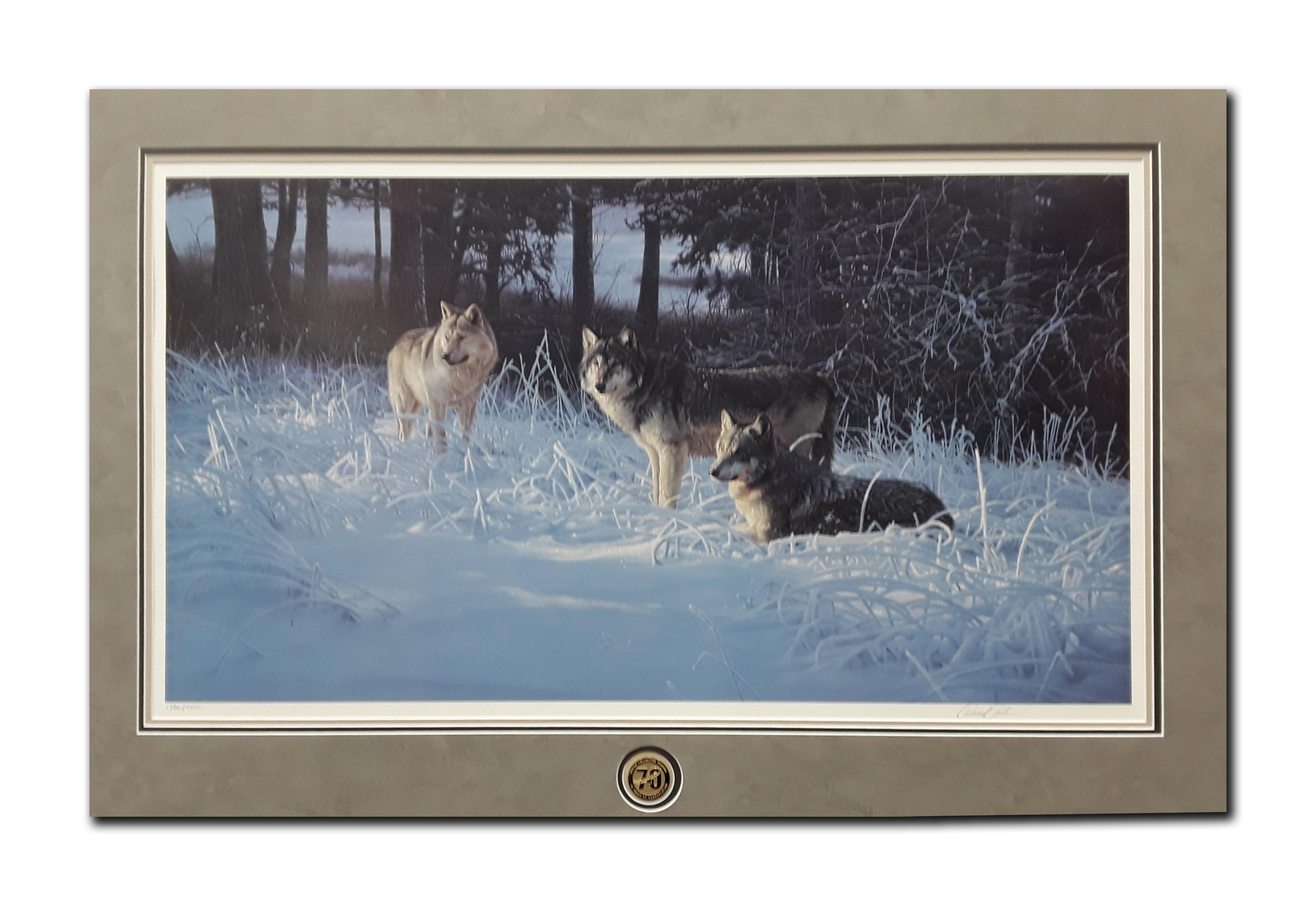 """Daniel Smith's """"Frost and Fire"""" Limited Edition Matted Print"""