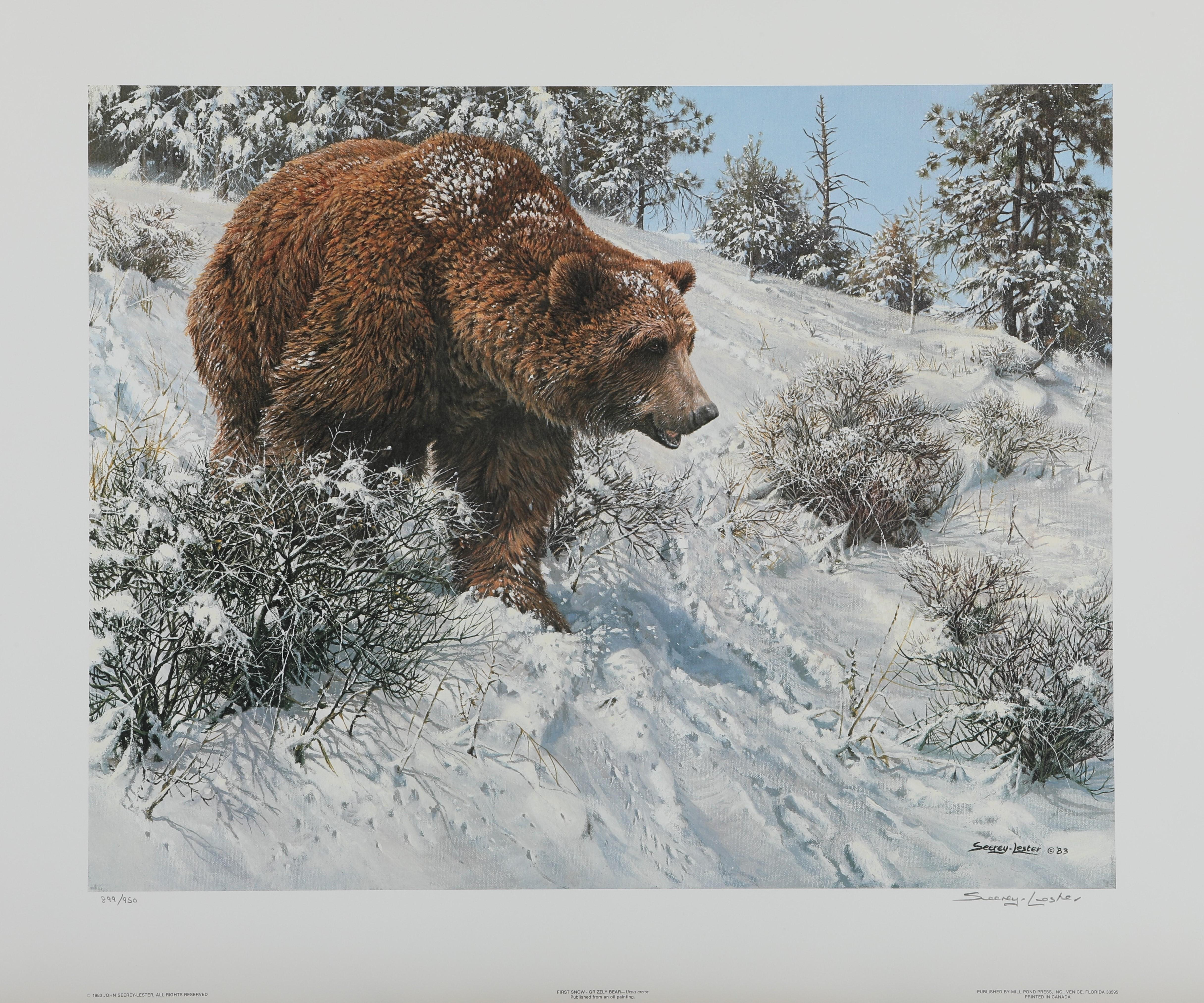 """John Seerey-Lester's """"First Snow - Grizzly Bear"""" Limited Edition Print"""