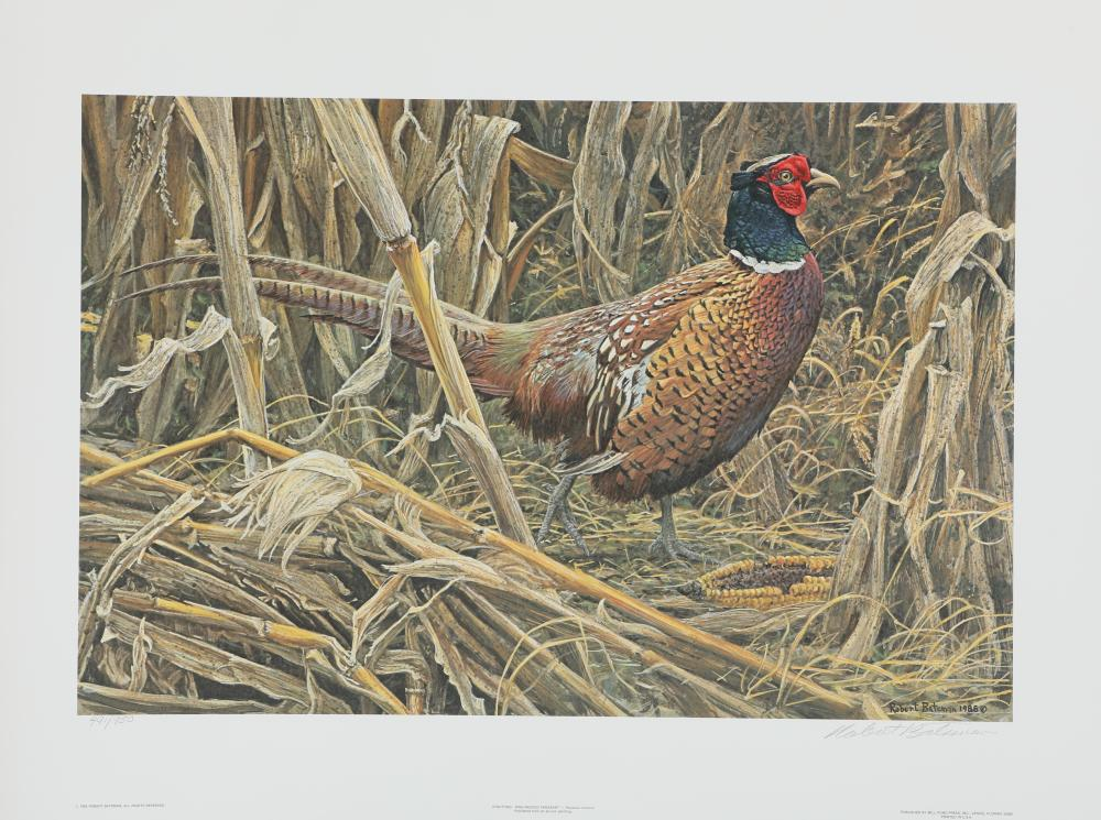 "Robert Bateman's ""Strutting - Ring-Necked Pheasant"" Limited Edition Print"