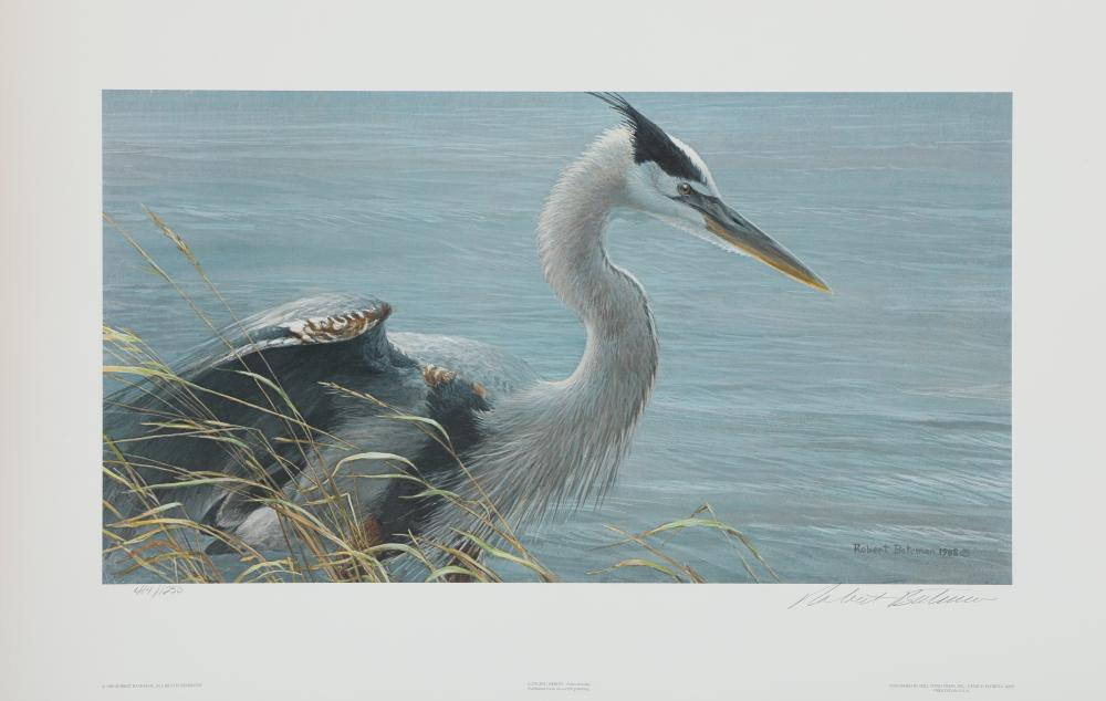 "Robert Bateman's ""Lunging Heron"" Limited Edition Print"