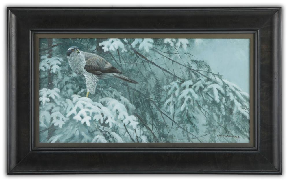 "Robert Bateman's ""Goshawk and Balsam"" Original"