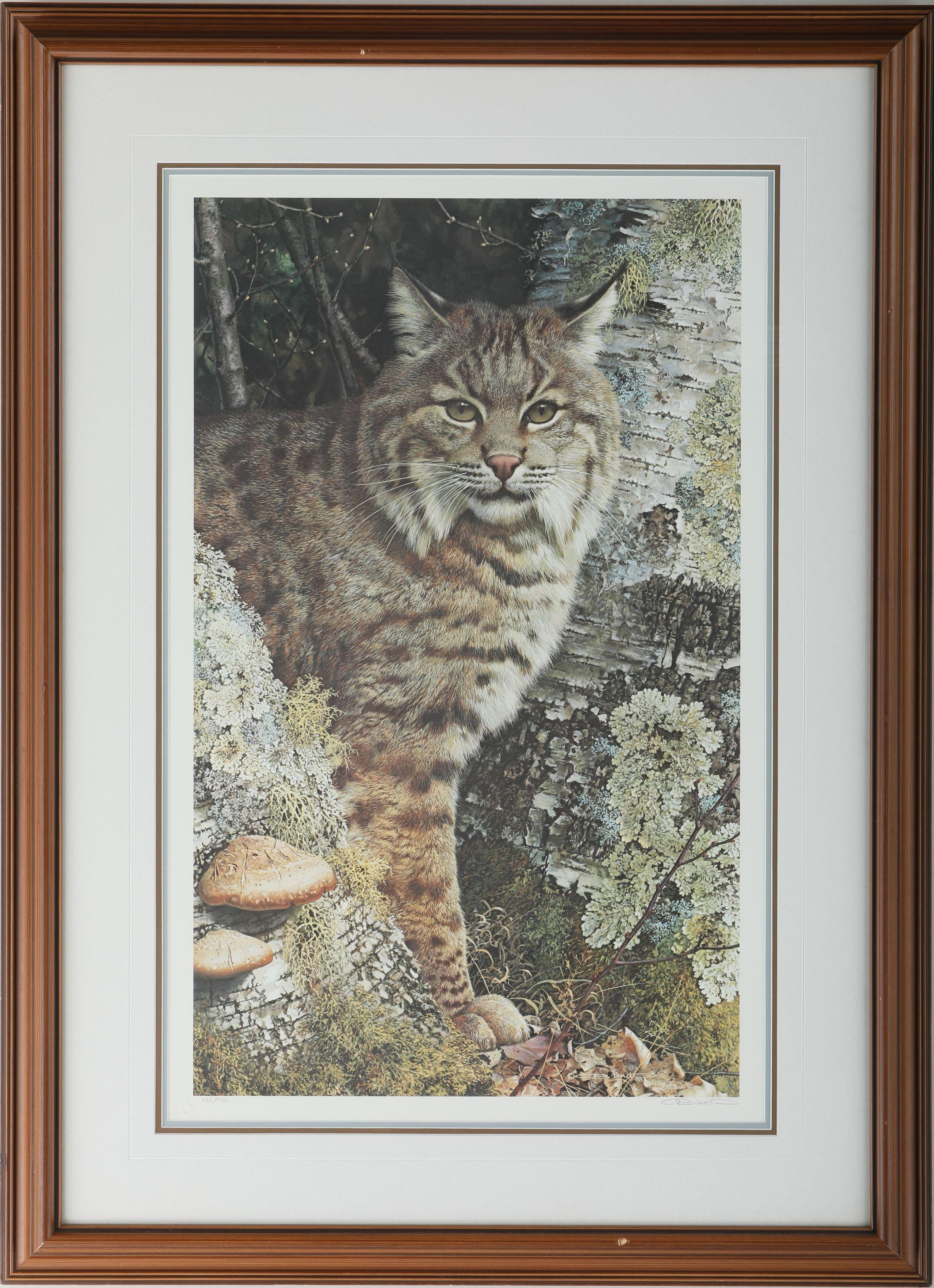 """Carl Brenders' """"Forest Sentinel - Bobcat"""" Limited Edition Print"""