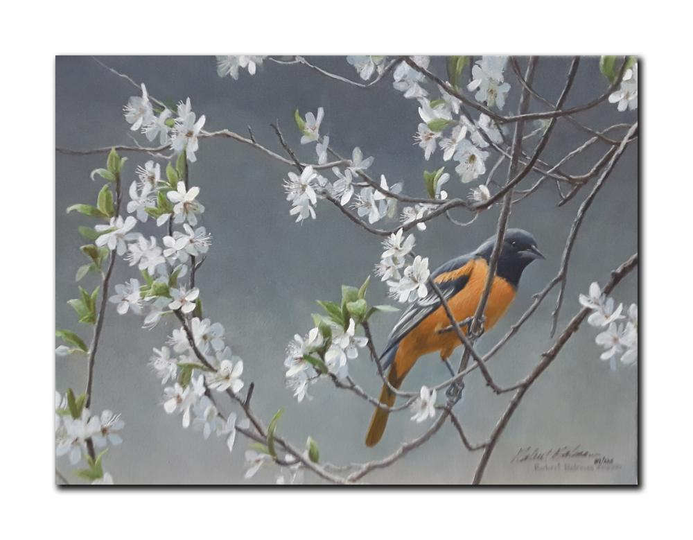 """Robert Bateman's """"Baltimore Oriole And Plum Blossom"""" Limited Edition Canvas"""
