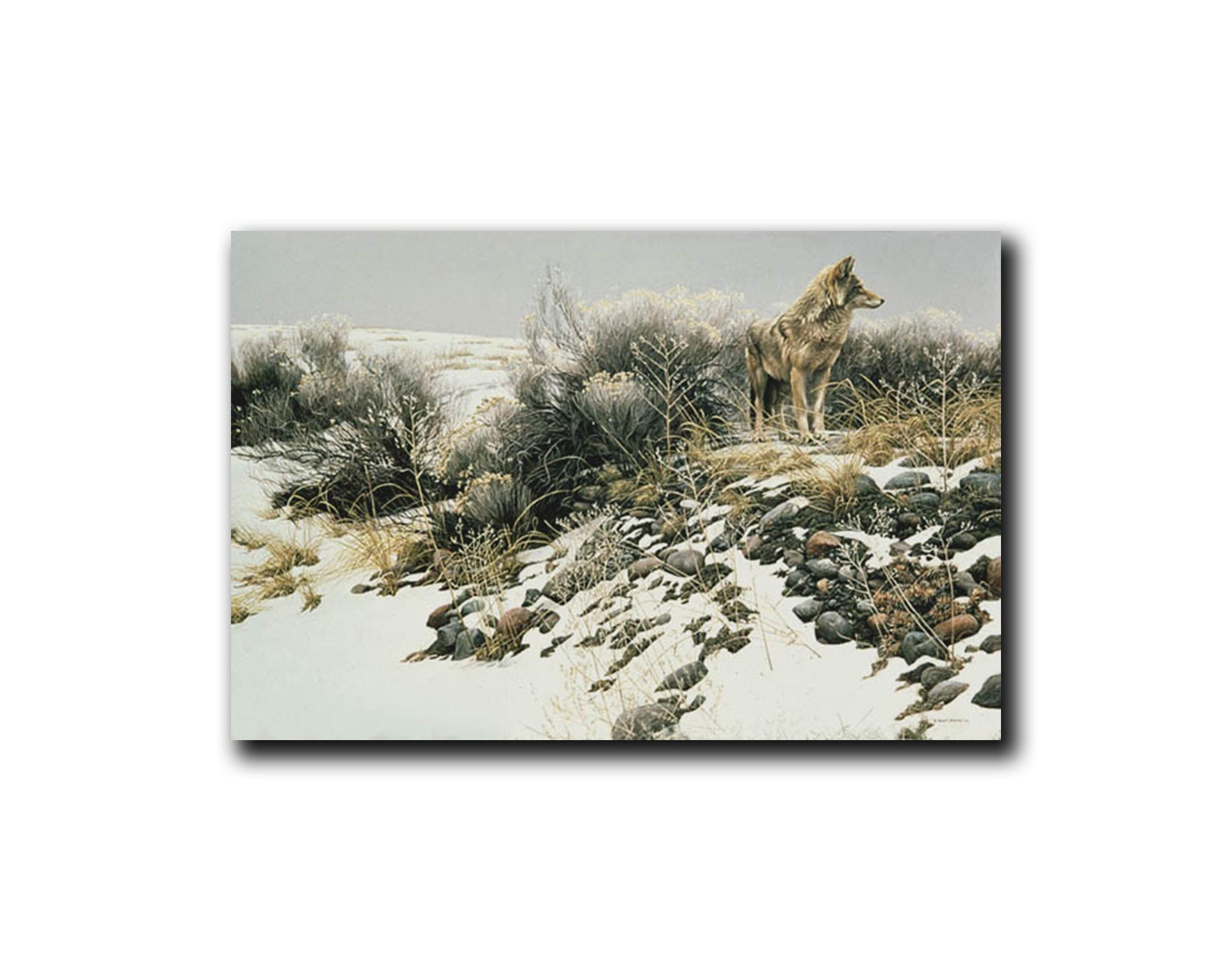 "Robert Bateman's ""Coyote in Winter Sage"" Limited Edition Framed Canvas"
