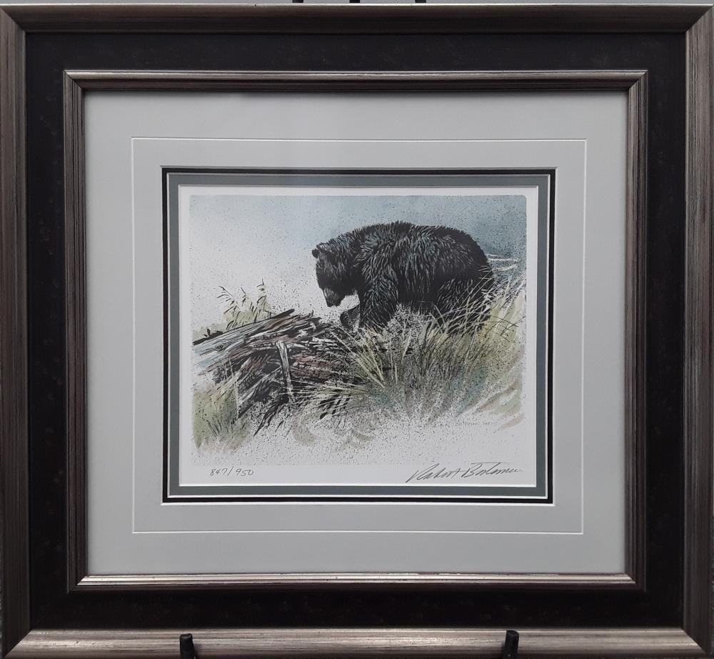 "Robert Bateman's ""Black Bear Foraging"", ""Black Bear Cubs In Tree"", and ""Black Bear Portrait"" Limited Edition Framed Prints"