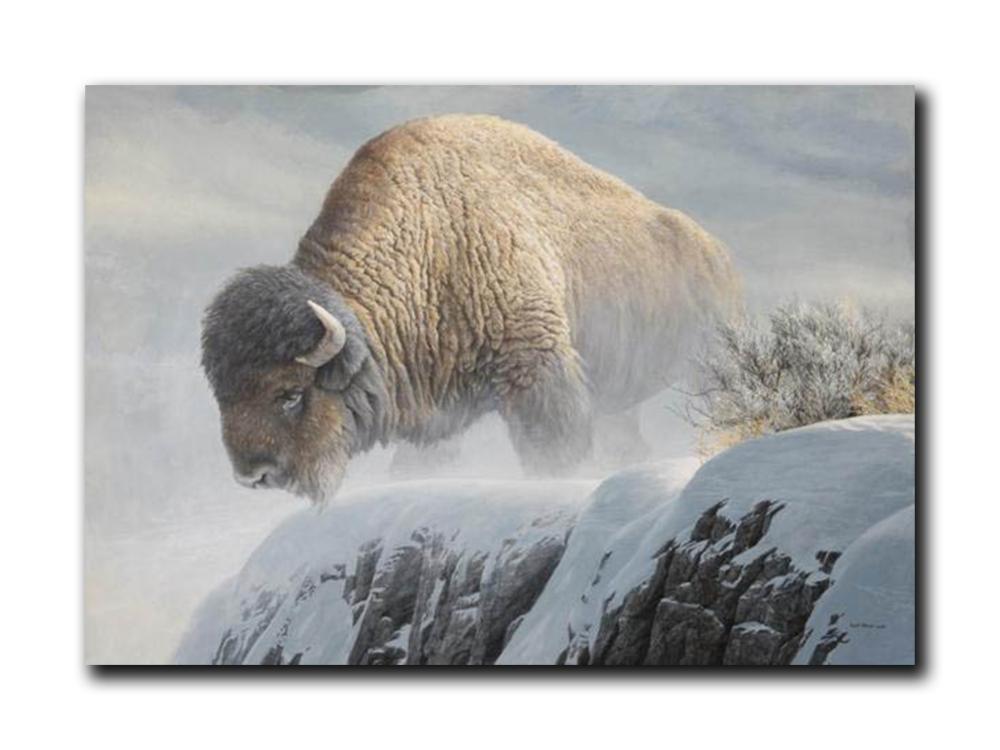 "Robert Bateman's ""Winter Bison"" Limited Edition Canvas Showstopper"