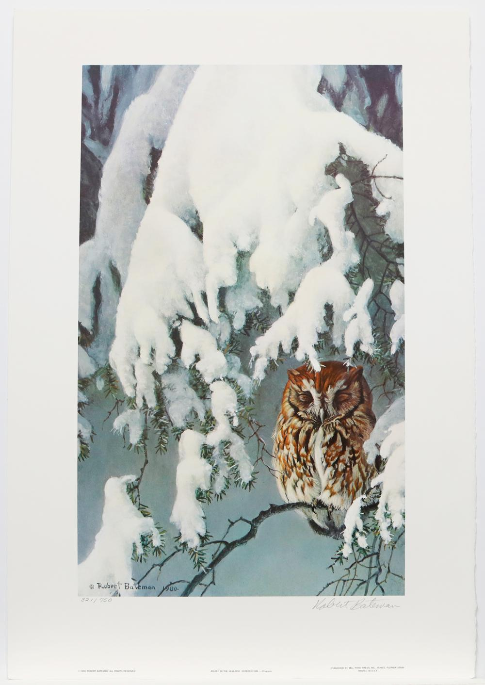 """Robert Bateman's """"Asleep in The Hemlock - Screech Owl"""" Limited Edition Print Signed and Numbered"""