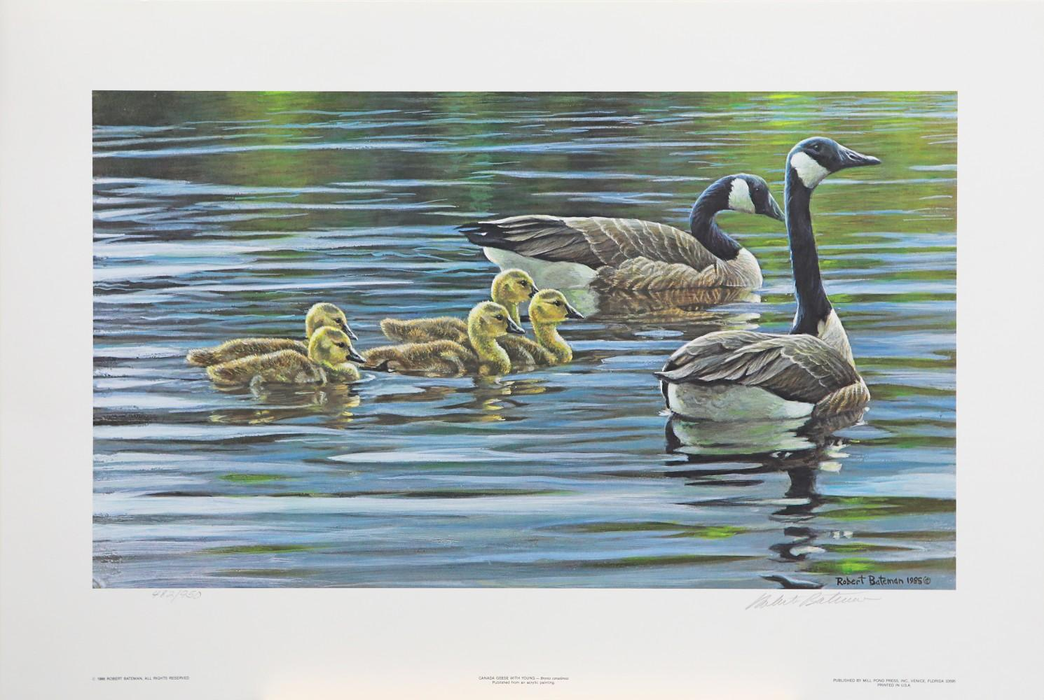"""Robert Bateman's """"Canada Geese With Young"""" Limited Edition Print"""